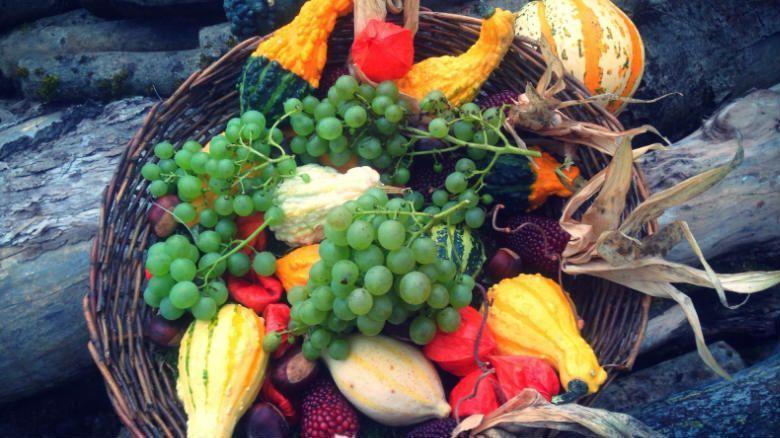Bodas en otoño, menú de temporada